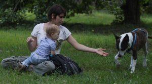 Научитесь говорить с собакой (c) Ольга Макарова